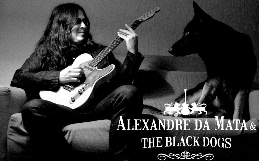O blues de Alexandre da Mata & The Black Dogs no Camping Rock