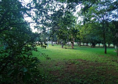 Área de Camping gramada